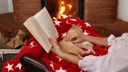 tlapky : Small kitten sleeping in woman lap in front of the fireplace - holidays season relaxation. Reading a book and watching the fire - camera slide, medium shot Dostupné videozáznamy