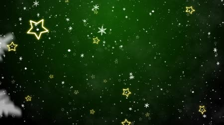 зеленый фон : Snowflakes and stars. New Years - the Christmas background Стоковые видеозаписи