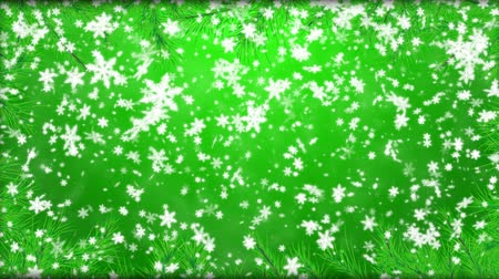 decorative : Winter background with falling snowflakes, fur-tree branches Stock Footage