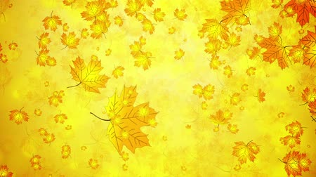autumn :  Falling autumn leaves Stock Footage