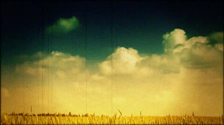 релаксация : Sky and cereals field in retro style