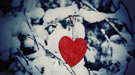 winter place : Textile heart hanged on a snow-covered forest bush