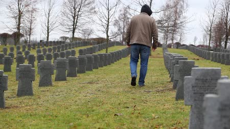 veteran's day : Man near soldiers grave