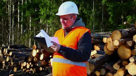 осмотр : Worried lumberjack with folder near logs in forest episode 2 Стоковые видеозаписи