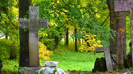 clerical : Old stone crosses on graves in autumn