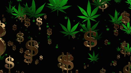 fiscal : Flying USA dollar signs and cannabis leafs in green on black