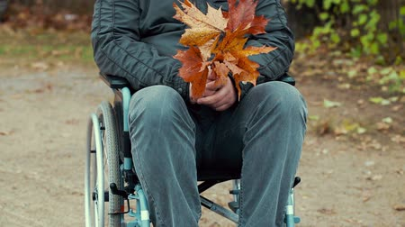 medicals : Disabled man with autumn leaves in wheelchair at outdoor in the park