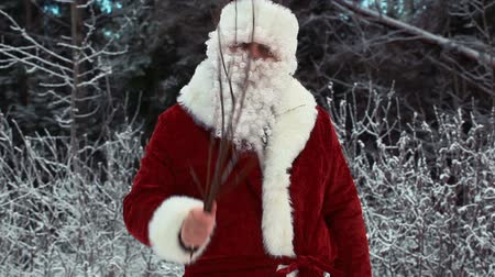 santa : Santa Clause with birch