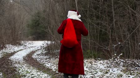 Санта шляпе : Santa Claus going down the road in the woods