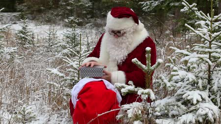 Санта шляпе : Santa Claus with gift bag in snowy forest Стоковые видеозаписи