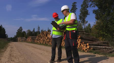 compares : Business men compares the documentation near log pile