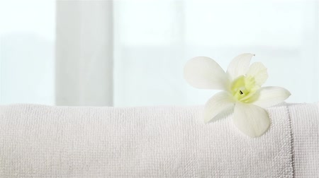 huzurlu : An orchid placed on towel Stok Video