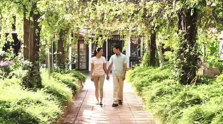 namoro : Man and woman walking hand in hand Stock Footage