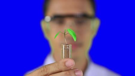 herbal : Man holding plant in test tube