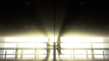 malajsky : Silhouette of businessman and businesswoman shaking hands