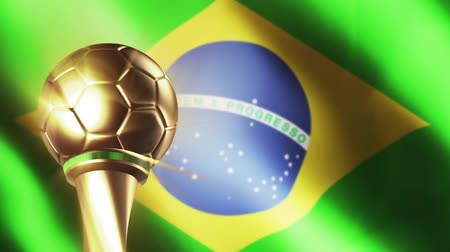 sampiyonlar : Football trophy with Brazil flag Stok Video