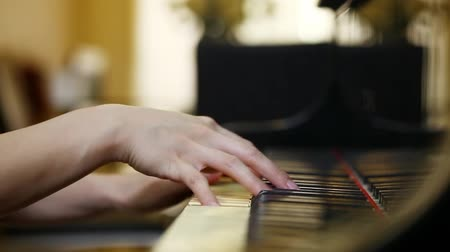 fortepian : A person is playing a song on the piano