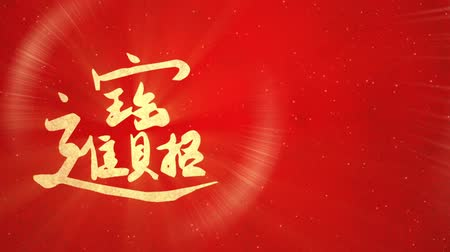 bao : Chinese New Year greeting wealth and prosper slide Stock Footage