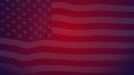 listras : Waving flag of United States of America