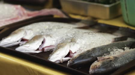 ramadan bazaar : Fresh fishes to be grilled at bazaar Ramadan