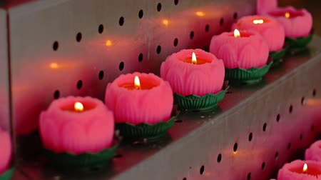 áldás : Lotus candles at local temple