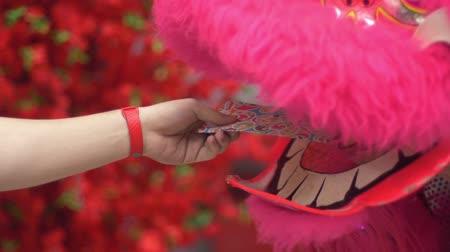 yüksek sesle : Giving angpao to lion dance at local temple