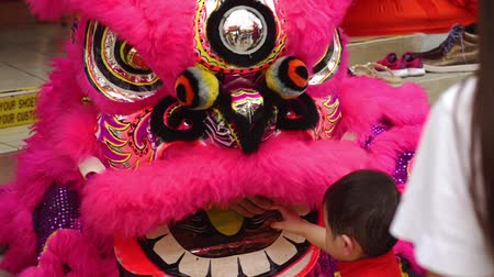 cny : Child playing with lion dance performers
