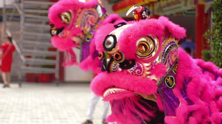 lion : Lion dance performance at local temple
