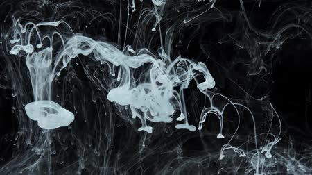 csík : Slow motion of white paint flow in water