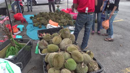 mal cheiroso : Asians buying Durians at a roadside stall. Durian is a king of fruit that have a notorious aroma but tastes like a rich custard highly flavoured with almonds.