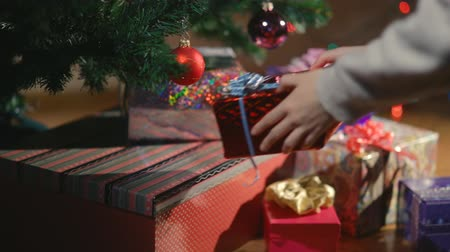 előkészítés : Hands putting Christmas presents under the Christmas tree