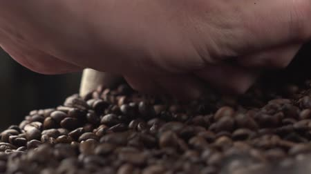italian coffee : Aromatic roasted coffee beans being held over a table, hands testing quality in slow motion.