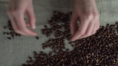 feijões : close up woman hands sorting poor qualitys of rusted coffee beans. Stock Footage