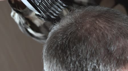 Woman hairdresser shaves a head of bald man. Close-up: Hairdresser makes hairstyle bald man. Stock Footage