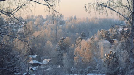 иней : winter landscape. frozen buildings on sunset