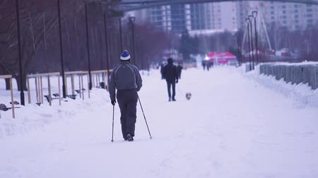 Nordic walking. Senior man on a walk in the park in winter. Active people outdoors, winter sport.