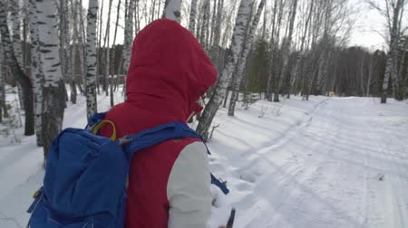 Woman with backpack hiking Lifestyle adventure concept. girl hiking on a winter forest with sticks.