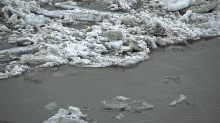 rachado : Frozen ice river is melting in spring with ice flakes flowing. Cracked ice floating on the river in spring time. Global warming