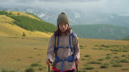 Woman hiking. Hike in the mountains. Woman traveler with backpack on beautiful summer landscape Stok Video