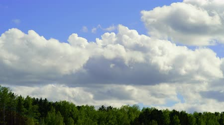 kecske : Time-lapse with pan-camera camera. Clouds are moving over green trees with a blue sky. Landscape.
