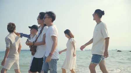 singaporean : group of young asian adults men and women having fun walking singing on beach, rear view.