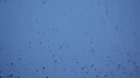 deszcz : Closeup shot of water drops falling on window. Shallow depth of field.