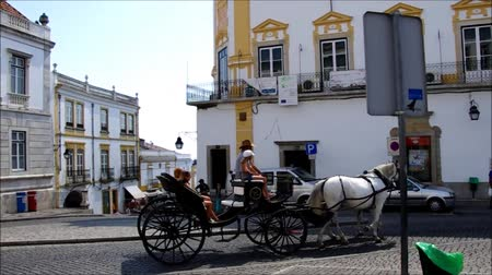 kordé : Horse and carriage at Giraldo square