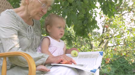 livro : Grandma showing baby pictures in the book.