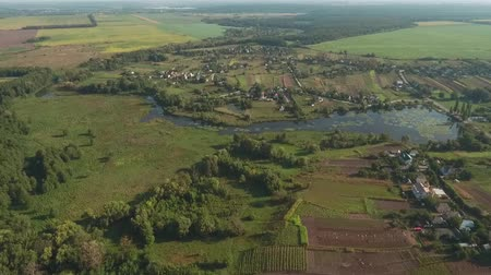 virgin forest : Beautiful view of the village, fields and small river. View from a height. Shooting from a drone. Stock Footage