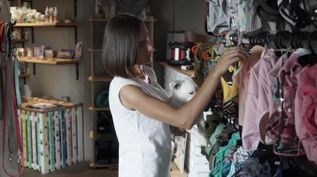 breeder : Pretty woman choosing clothes for her Jack Russel Terrier. Dog owner in dog shop with her pet. Indoor. Girl holding a dog in her arms.