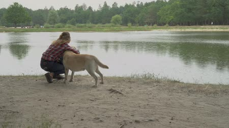 tur : Curly lady is petting her dog near the river. Outdoor rest with favourite pet. Girl is petting her labrador in the bank of the lake Stok Video
