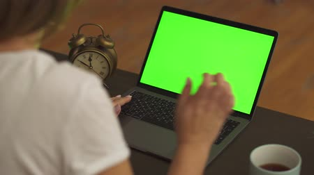gadjet : Close-up shot of a female hands working on a laptop with green screen on Stock Footage