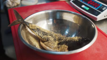 makrela : Cook prepares sea fish mackerel close up. Whole fish sprinkling with seasoning in aluminium bowl in slow motion. Kitchen scales in the background. Tasty food preparation in modern restaurant Dostupné videozáznamy