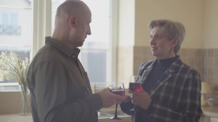 red wine : An elderly couple with wine glasses standing by the wide window in the kitchen. Stock Footage